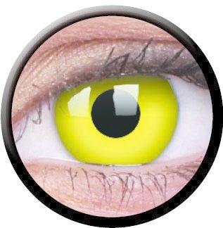 Yellow (Jahreslinse) (1x2)